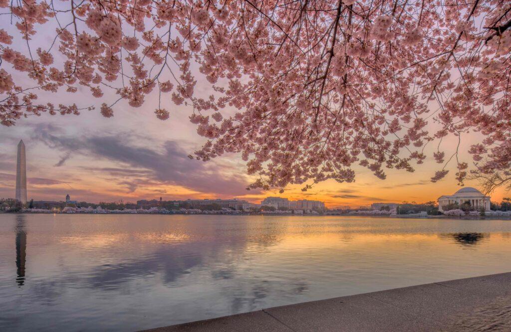 a beautiful sunset photograph of washington DC