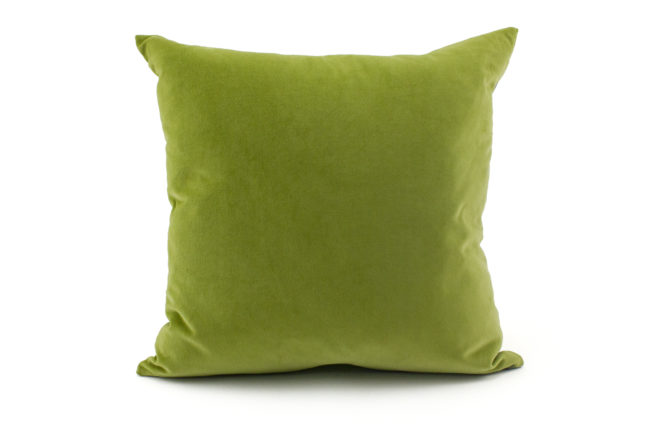 Arachen grey citron yellow throw pillow velvet back